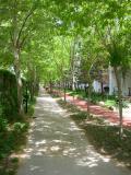 Album foto Antalya Zona Kundu